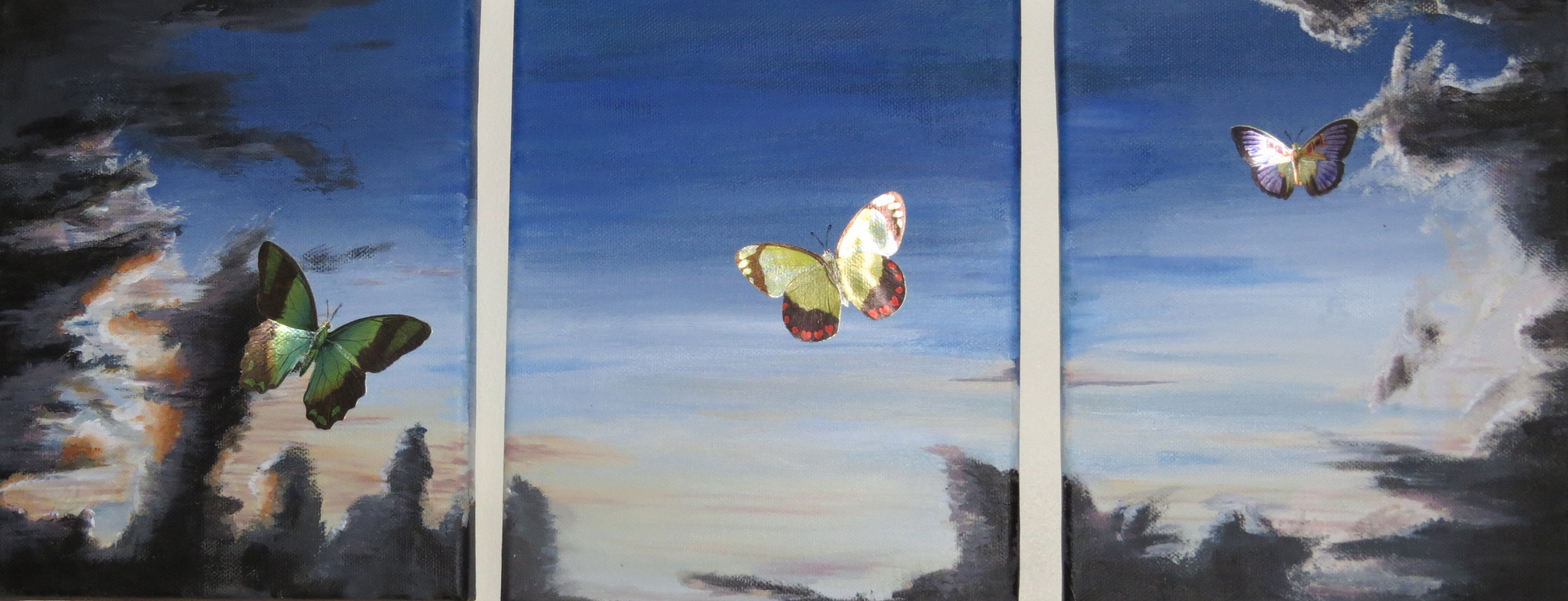 3 x Mixed Media on canvas - Inspied by an image found online. The butterflies are die cut images